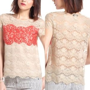 Anthropologie Porcelain Color Block Lace Top - S